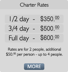 Charter Rates